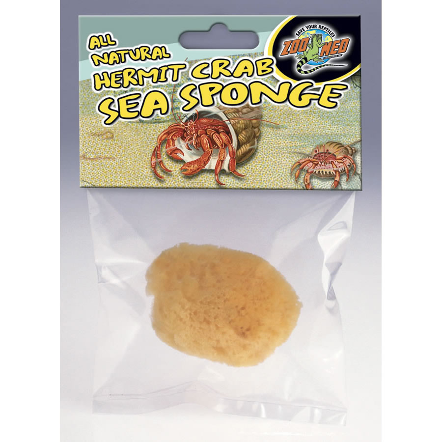 ZM Hermit Crab Sea Sponge, HS-10 Image