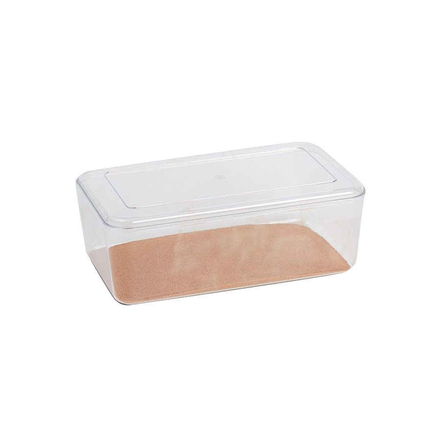 Stewart Clear Hatchling  Box, Large Image