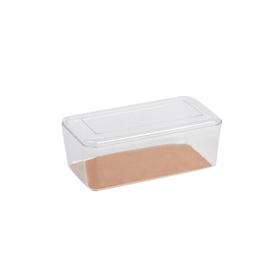 Stewart Clear Hatchling  Box, Small Image