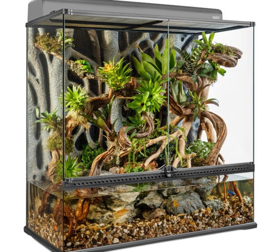Zoo Med Paludarium system – building a home for aquatic, semi-aquatic and arboreal species